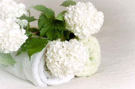 Spa towels and flowers photo
