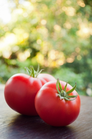 Two red tomatoes on a wooden table.  Stock Photo - 15092537