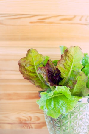 lettuce in glass bowl  Stock Photo - 15315732