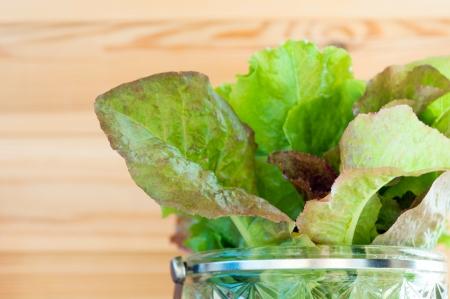 leaves of lettuce in glass bowl  Stock Photo - 15315734