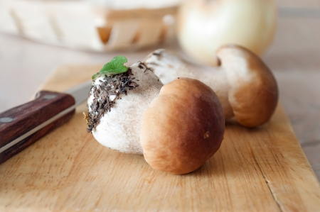 Wooden chopping block with a knife and two of fresh porcini mushrooms photo