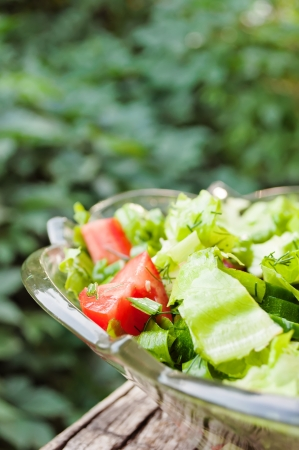 summer vegetable salad with onion, tomato, cucumber and leves salad  Stock Photo - 21809794
