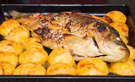 abramis: Sea bream fish with potato on white plate close-up  Stock Photo