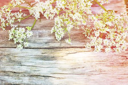 ヴィンテージの木製の背景に夏の白い花 写真素材