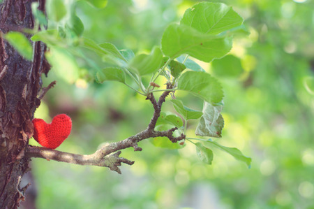 i love you heart: Heart, red heart, valentines day postcard, love, love you, I love you, Stock Photo
