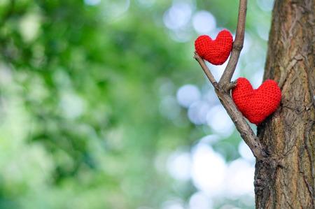 Heart, red heart, valentines day postcard, love, love you, I love you, Standard-Bild