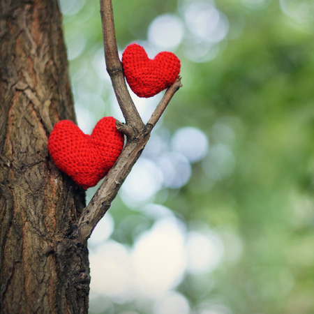 Two red hearts on tree. valentines day postcard, I love you, Foto de archivo
