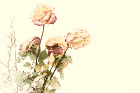 Dry bouquet of roses. Fading beautiful rose.