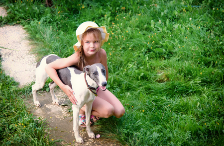 children girl hugs the whippet terrier doggy on summer nature Stock Photo