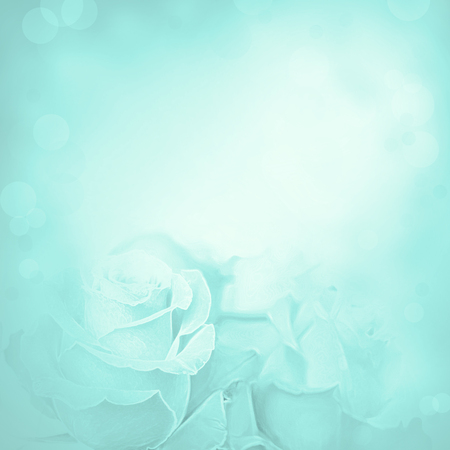 Pink background with rose flowers. Beauty spring backgrounds with roses, fine art simulation from real photo