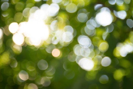 Abstract green bokeh nature background. Blurred background. Stock Photo