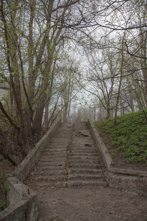 Old stairs in the park, with ruined, crumbling and grass-covered steps. Gloomy, mystical toning. The concept of ruin, devastation, death of life on Earth