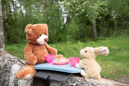 True friends - the rabbit and the little bear are sitting on the grass during a picnic in a park,  at a summer forest picnic. Stockfoto