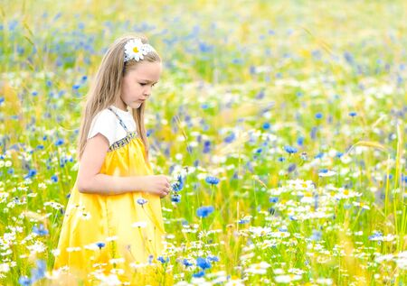 Little pretty girl in yellow Russian dress picking flowers in field of wild flowers on summer day. Cute child smiling girl in chamomile field. concept of Russian traditions and folklore. Imagens