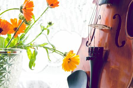 Horizontal image with Violin and flowers on the window. Music, nature and art. Selective focus.