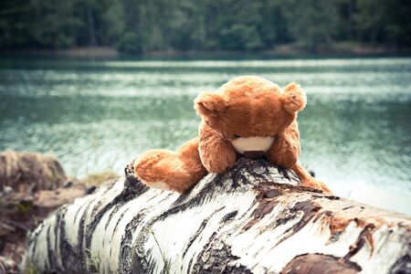 Cute brown Bear animal  doll on nature background. Single bear doll on nature background 版權商用圖片