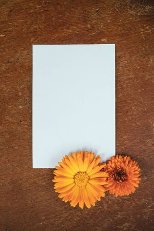 Beautiful flower composition. Mockup with white sheet of paper and orange garden flowers. Summer vintage decor. Layout on wooden table.