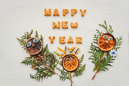 Flat lay composition for greeting card Cookies in the shape of the letters, laid out in the words happy new year on white textured background. Funny Christmas family of twigs, dried oranges with eyes.