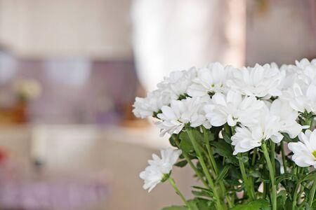 Bouquet di crisantemi bianchi ravvicinati su uno sfondo sfocato all'interno dell'ambiente domestico. Copia spazio