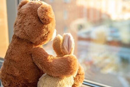 Best friends teddy bear and bunny toy sitting on window sill hugging each other and looking out of window on sun light. Love, family and friendship concept.