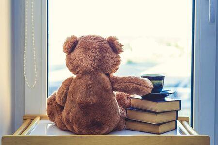Süßer Teddybär, der in Windiws mit Tasse Kaffee oder Tee auf Stapel Büchern schaut... Bei einem Morgensonnenlicht. Guten Morgen Konzept. Romantisches Geschenk. Rückansicht.
