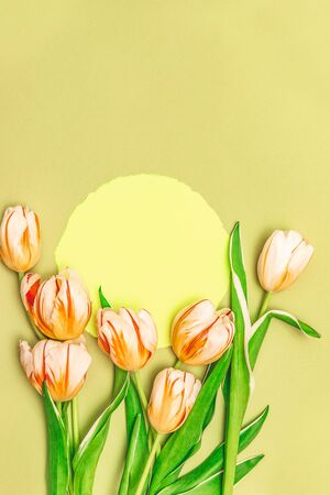 Composition with yllow round and a bouquet of beautiful tulips. The concept of spring holidays, spring time. Copy space.
