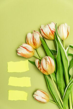 Three rectangular pieces of yellow paper with torn edges for your text and a bouquet of tulips. The concept of spring holidays, spring time.