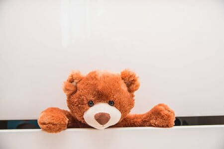 Brown plush toy Teddy bear crawling out of chest of white drawers. Copy space.