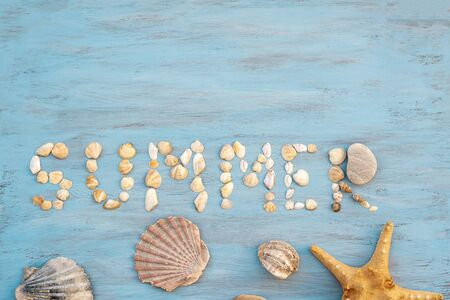 top view word summer of sea shell on light blue wooden textured for holiday vacation time background