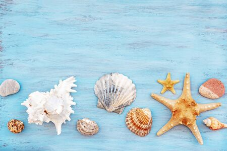 beach scene concept with sea shells and starfish on a blue wooden textured background. Concept summer holiday.