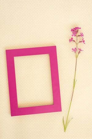 Creative layout made of purple frame and wild flower on paper card note. Flat lay. Nature concept. Фото со стока