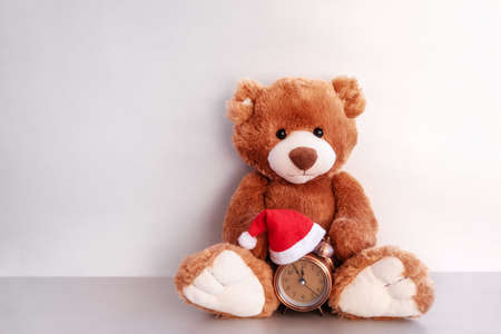 Teddy bear sits and keeps alarm clock in red hat on white background