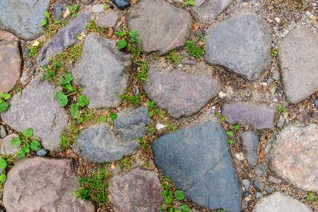 Stone blocks paving, pavement or path outdoors