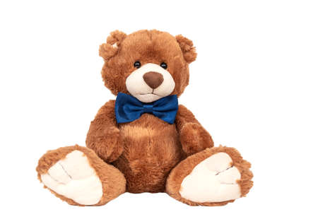 Cute teddy bear with blue bow tie sitting at white wall