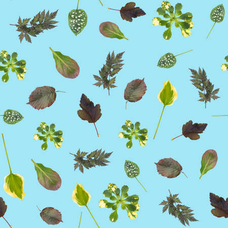 Green leaves natural pattern seamless on pastel blue