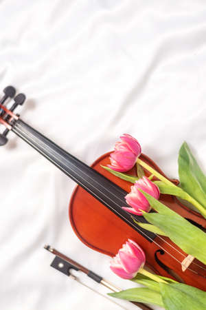 Acoustic violin and red tulips on white silk blanket. Stock Photo
