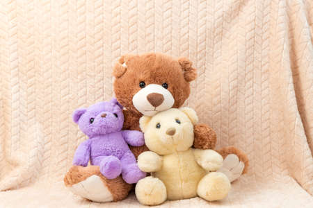 Cute little stuffed toys as studio decoration
