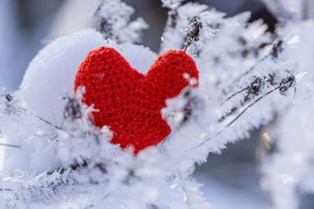 Red heart on the snow. Background Valentines day , place for text, love heart Foto de archivo