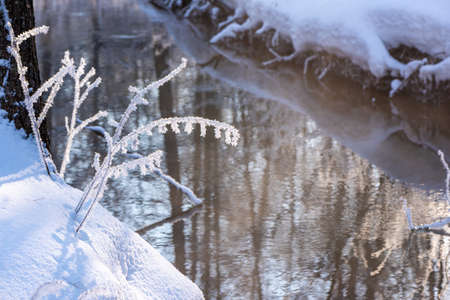 An unfrozen small forest river on frosty winter day. The shores are covered snow. Reflection of trees on water surface