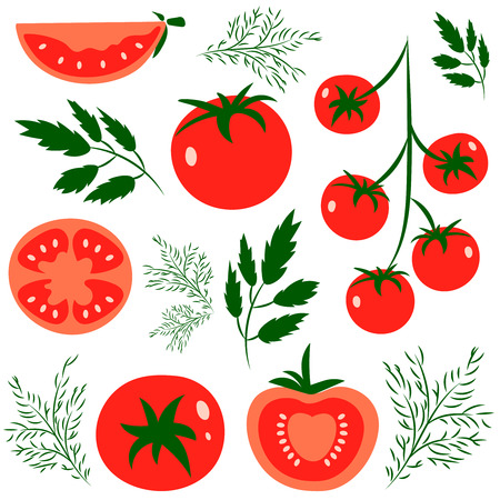 color illustration: Set of fresh healthy red tomatoes made in flat style. Great for  design of healthy lifestyle or diet. Single tomato, half a tomato, a slice of tomato, cherry tomato. Vector illustration.