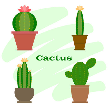 Set of cactus in flower pot. Cactus icon. Cartoon Cactus Illustration. Green and exotic plant. Flat style vector illustration. Иллюстрация