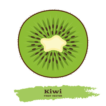 kiwi fruit: Fresh green kiwi fruit in flat style. Illustration