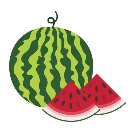 Vector illustration of fresh ripe watermelon.