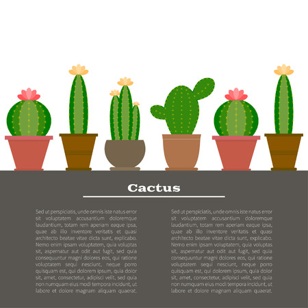 Cactus illustration background in vector with place for your text. Cartoon Cactus Illustration. Green and exotic cactus plant. Flat style vector illustration of cactus. Иллюстрация