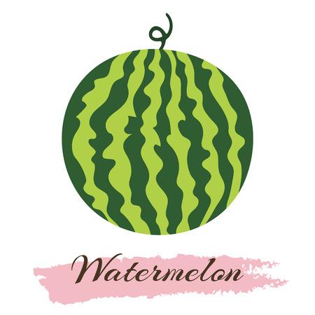 Vector illustration of fresh ripe watermelon. Watermelon vector illustration. Summer concept. Watermelon Isolated. Watermelon icon.