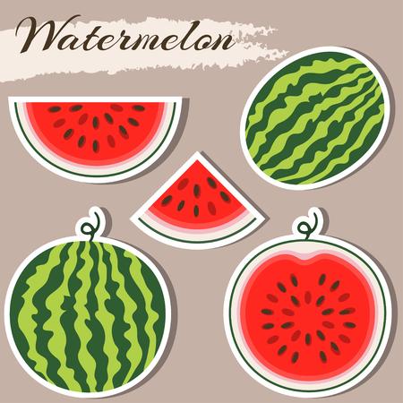 Set of fresh ripe watermelon. Single watermelon, half a watermelon, a slice of watermelon. Summer concept. Watermelon vector illustration. Sticker watermelon