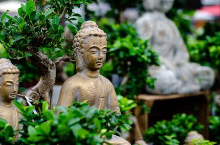 Close up of Buddha statue in bonsai trees garden