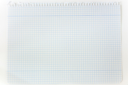 squared: blank squared page of notepad over white background