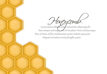 honeycomb: EPS10 file. Vector background with structure of honeycomb and space to write your own text Illustration