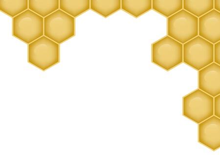 celula animal: fondo con estructura de nido de abeja y el espacio para escribir su propio texto